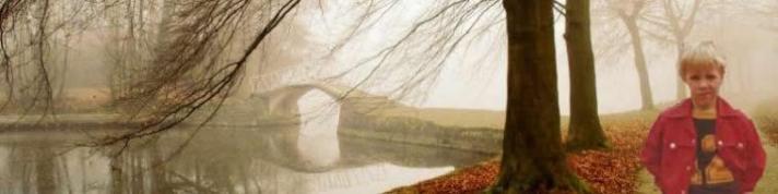 cropped-mist